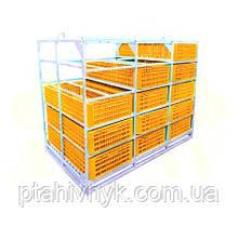 Контейнер для ящиків для перевезення птиці h22