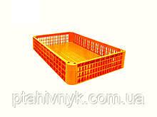 Ящик для перевезення птиці h22