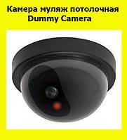 Камера муляж потолочная Dummy Camera