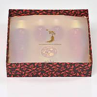 Набор из 5 средств по уходу за лицом с красным женьшенем Eunyul Red Ginseng Special 5 Set (8809435400353), фото 2