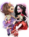 Куклы Monster High Монстер Хай серия Monster Elves Шарнирная (27 см) TOY006, фото 2