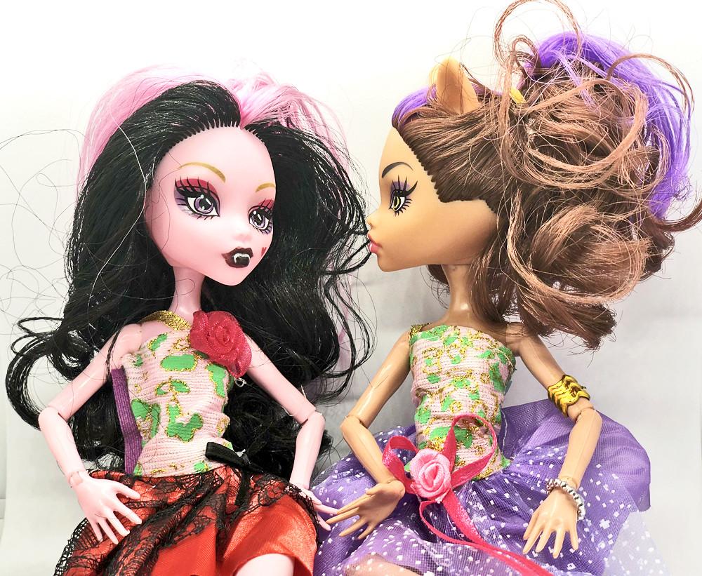 Куклы Monster High Монстер Хай серия Monster Elves Шарнирная (27 см) TOY006