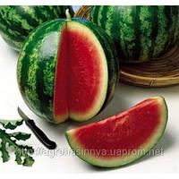 Семена арбуза Кримсон Свит (500г) Clause, фото 1