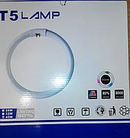 Лампа люминесцентная кольцевая T5 40W
