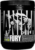Предтренировочный комплекс Universal Nutrition Fury  (480 г)