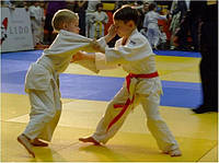 Маты детский гимнастический, фото 1
