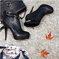 Ботинки женские демисезонные весна-осень на каблуке искусственная кожа черные, фото 1