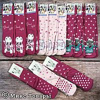 Детские махровые носки с тормозами для девочки Размер: 4- 5 лет (12 шт в упаковке) (7556)