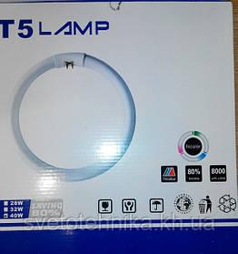 Появилась в продаже новая линейка энергосберегающих ламп - кольцевые люминесцентные лампы Т5