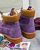 "Женские зимние ботинки Timberland ""Violet"" (в стиле Тимберленд), фото 7"
