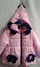 Детская куртка для девочки Ромашка р.98-116 пудровый+темно-синий
