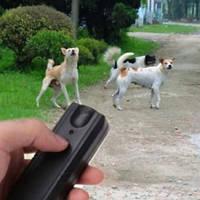 Как устроен и работает отпугиватель собак