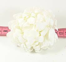 Головка хризантеми