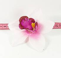 Головка орхідеї №1