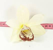 Головка орхідеї №2