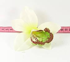 Головка орхідеї №5
