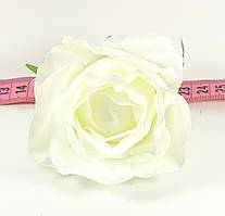 Головка троянди вівальді №17