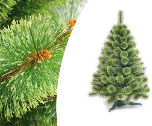 """Сосна """"Новогодняя"""" с распушенными кончиками высота 300 см длина хвои 10 см."""
