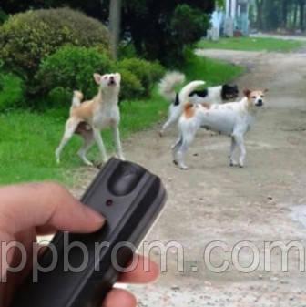 лучшая инновационная защита от нападающих псов - Уз отпугиватель