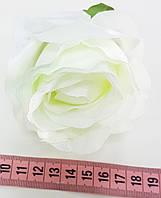 Головка троянди вівальді №6