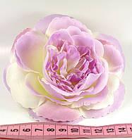 Головка троянди №2