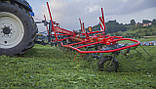 Ворушилка роторна SIP Spider 815/8, фото 6