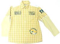 ce0a721fb40 Рубашка Wojcik для мальчика подростка Druzyna Orla Клетка
