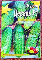 Семена огурцов сорт Цезарь F1, пакет 10х15 см