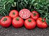Семена томатов детерминантных (низкорослых) Томск F1/Tomsk F1(1000 сем.), Bejo, Нидерланды