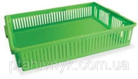 Ящик великий для перевезення добових курчат