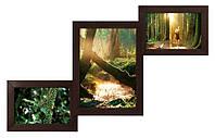 Деревянный фотоколлаж на 3 фото 52х32см (7 цветов)
