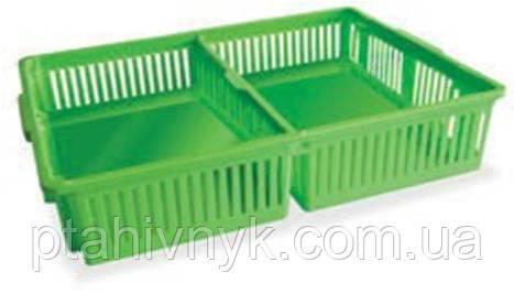 Ящик большой для перевозки суточных цыплят с двумя делениями