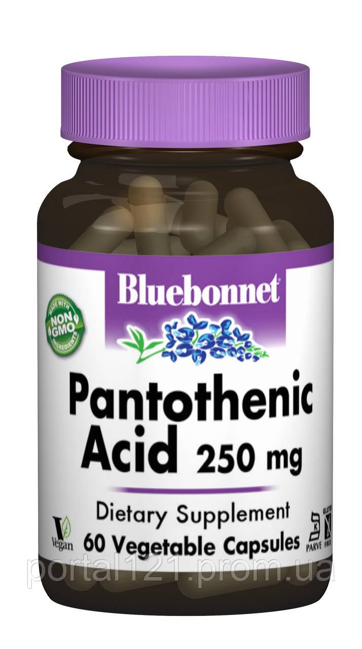Пантотеновая Кислота (B5) 250мг, Bluebonnet Nutrition, 60 гелевых капсул