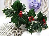 Лист падуба зеленый с белыми кончиками трилистник 18 грн - 10 шт, фото 3