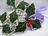 Лист падуба зеленый с белыми кончиками трилистник 18 грн - 10 шт, фото 4