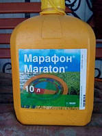 Марафон к.с., 10л