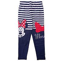 Детские лосины Минни Маус (Minnie) на девочек 3-8 лет ТМ Disney (Sun City) Синий в полоску RH1199-stripes