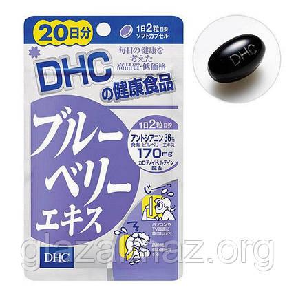 DHC Blueberry Extract японские витамины с вытяжкой Черники 20 дней - 40 гранул, фото 2