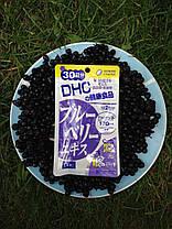 DHC Blueberry Extract японские витамины с вытяжкой Черники 20 дней - 40 гранул, фото 3