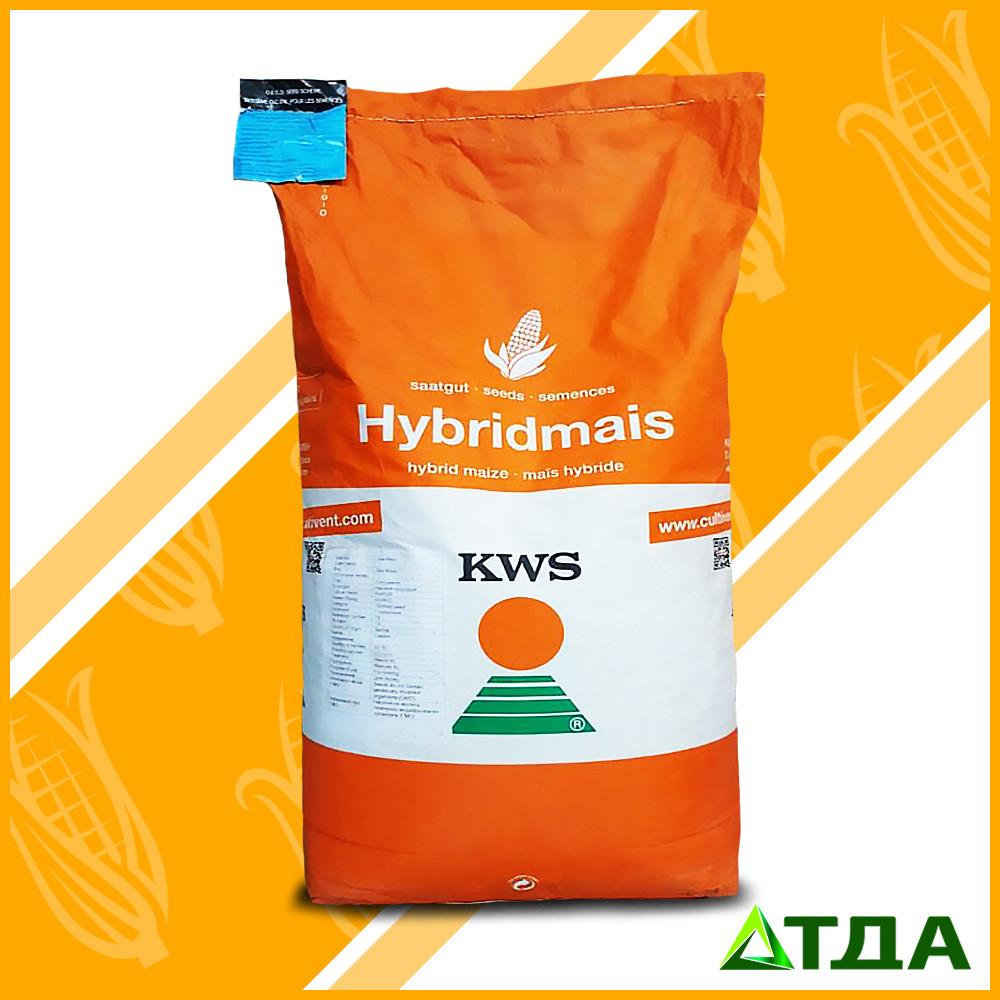 Семена гибрида кукурузы Богатир ФАО 290