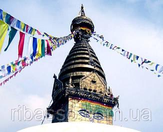 9040370 Тибетские флажки ЛУНГ-ТА L = 106см. 5 флажков