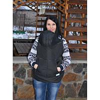 Слінгонакидка зимова (Слингонакидка зимняя) Чорна, фото 1