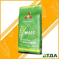 Семена гибрида: кукуруза ДМС Гроно