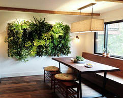 Вертикальное озеленение кухни. Фитостена. Фитомодуль.