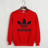 Утепленный свитшот мужской с принтом Adidas Адидас Кофта красная (РЕПЛИКА)