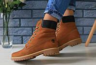 Жіночі черевики Timberland молодіжні стильні тімберленди шкіра нубук (руді), ТОП-репліка, фото 1