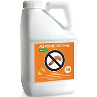 Инсектицид Антигусень (Карате Зеон)