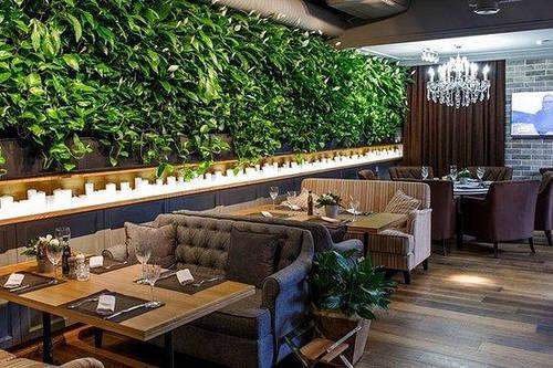 Вертикальное озеленение ресторана. Фитостена. Фитомодуль.