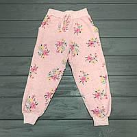Спортивные штаны теплые(начес) для девочек оптом р.3-10 лет