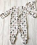 """Человечек для новорожденного  с шапочкой """"Ежики"""", фото 3"""